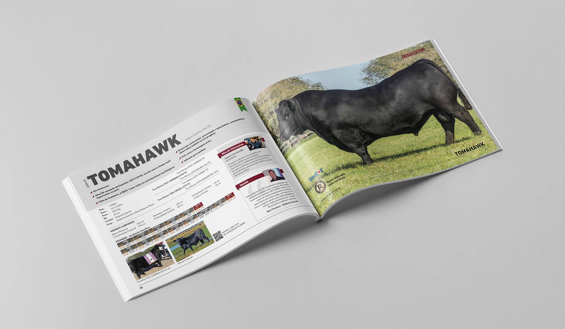catalogo de touros angus, brangus, braford, hereford, devon, renascer biotecnologia, bedez, comunicação, criação de catálogos