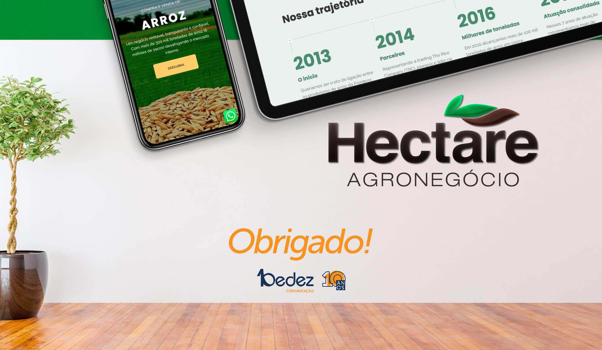 criação de site corretora de arroz hectare agronegócio uruguaiana